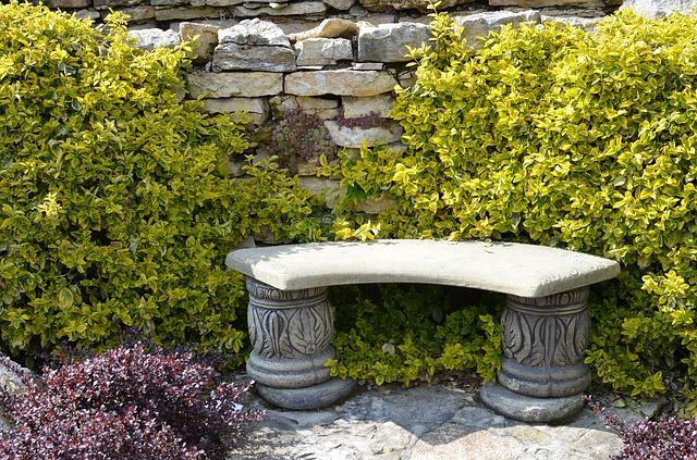 kamenná lavice, keře, slunce